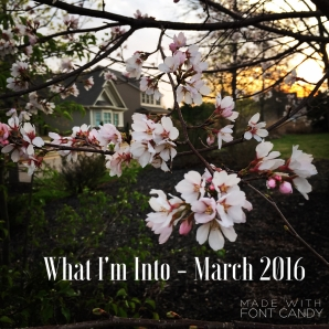 What I'm Into. March 2016
